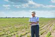Farmer looking at rows of corn