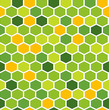 The fresh hexagon background