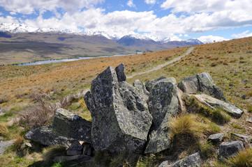 Mount John to Lake Tepako walk, New Zealand.