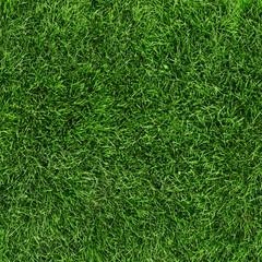 Grass deamless