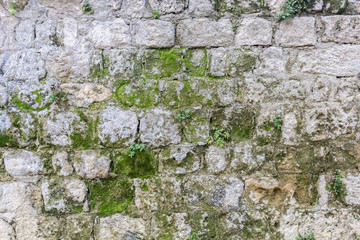 Texture of stone wall with moss