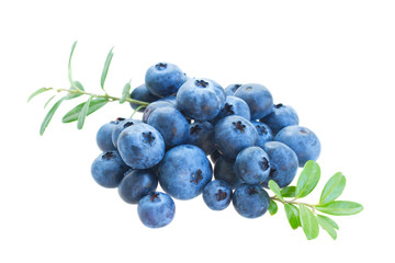pile of blueberry