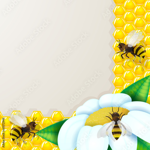 Bees with flowers over honeycomb background