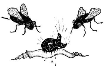 Houseflies And Shit