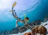 Snorkeling - 61074972