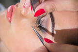 Fototapety Eyelash Extensions