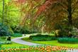 Beautiful Keukenhof spring garden