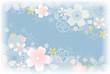 桜背景 ブルー