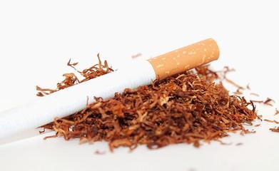 Tabak und Zigarette