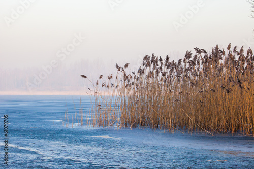 Lake Pogoria. Winter time landscape in Poland