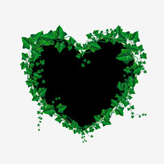 Vector Ivy branch heart illustration