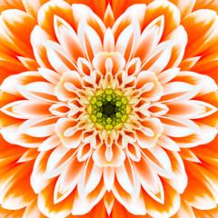 Orange Concentric Flower Center. Mandala Kaleidoscopic design