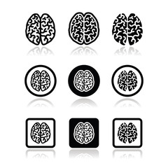 Human brain icons set - intelligence, creativity concept