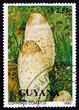 Постер, плакат: Postage stamp Guyana 1990 Shaggy Mane Mushroom