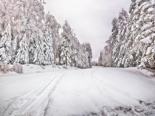 Snowy winter road thru the forest