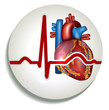 Human heart rhythm icon
