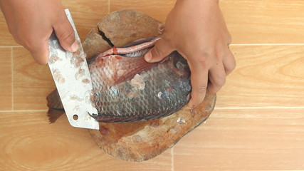 Descaling fish by knife