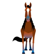 A horse on white background.