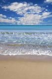 paisaje de una playa tropical en vertical