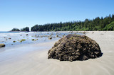 Low tide on the Long Beach.  Vancouver Island, Canada