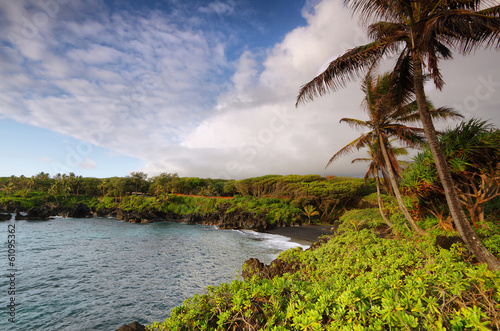 Black sand beach views in Waianapanapa State park