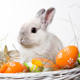 white rabbit in a basket with easter eggs