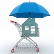 Concept of protection of property purchase.