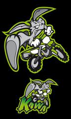 Rabbit moto