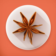 Anise, long shadow vector icon