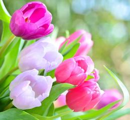 Muttertag, Geburtstag, Valentinstag: duftiger Blumengruß