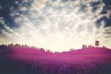 Surreal dramatic landscape, ultraviolet foliage poster