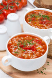 tomato soup with rice, vegetables and herbs