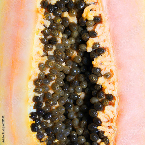 Papaya closeup. Background