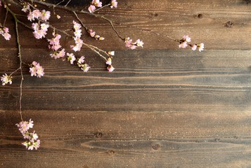 Cherry blossoms on Japanese wooden background