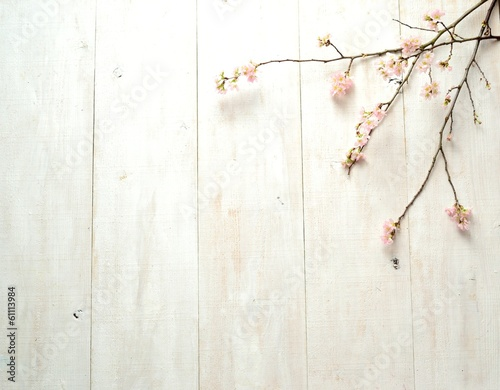 Fotobehang Kersen Cherry blossoms on white wooden background
