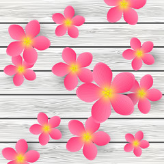 Pink flowers for Your design