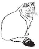Flurry cat poster