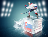 Slovakia - USA game. Spunky hockey player on ice cube
