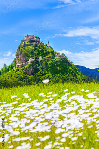 Hochosterwitz castle and chamomile field