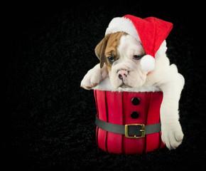 Is Christmas Over yet?