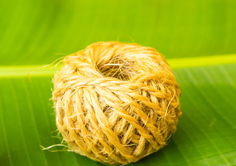 Rope coil on green banana leaf background