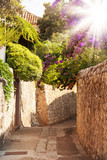 Mediterranean street with flowers and trees - 61125132