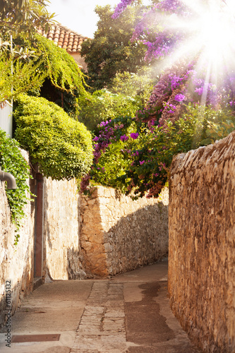 Mediterranean street with flowers and trees