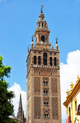 Giralda tower in Seville, Andalucia, Spain