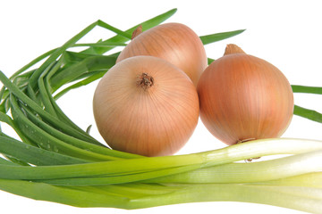 Bulb and green onion isolated on white