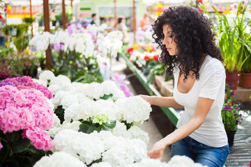 Woman shopping in a greenhouse
