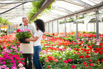 Greenhouse worker giving a plant to a customer