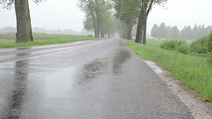 Closeup of water rain drops fall on asphalt road between trees
