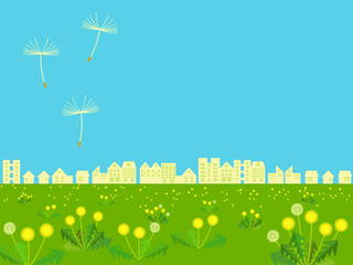 Dandelion meadow – City