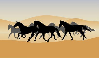 herd in the desert